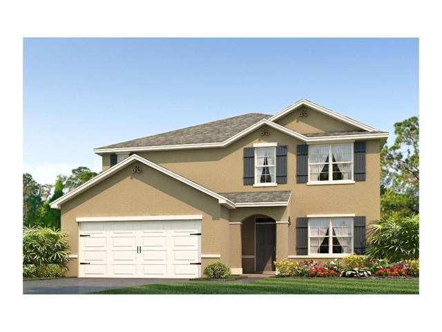 10642 Park Meadowbrooke Drive, Riverview, FL 33578 (MLS #T2883544) :: The Duncan Duo & Associates