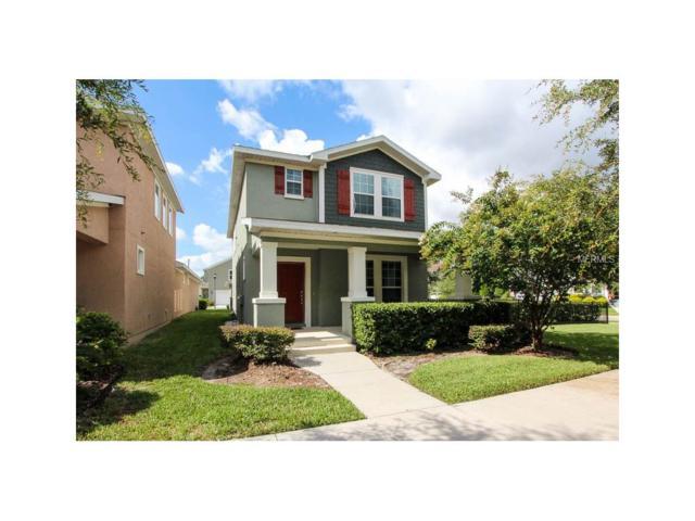 16128 Palmettorun Circle, Lithia, FL 33547 (MLS #T2883797) :: The Duncan Duo & Associates