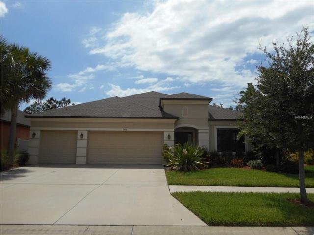 8438 White Poplar Drive, Riverview, FL 33578 (MLS #T2883998) :: The Duncan Duo & Associates
