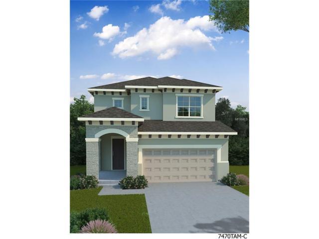 14266 Natures Reserve Drive, Lithia, FL 33547 (MLS #T2884376) :: The Duncan Duo & Associates