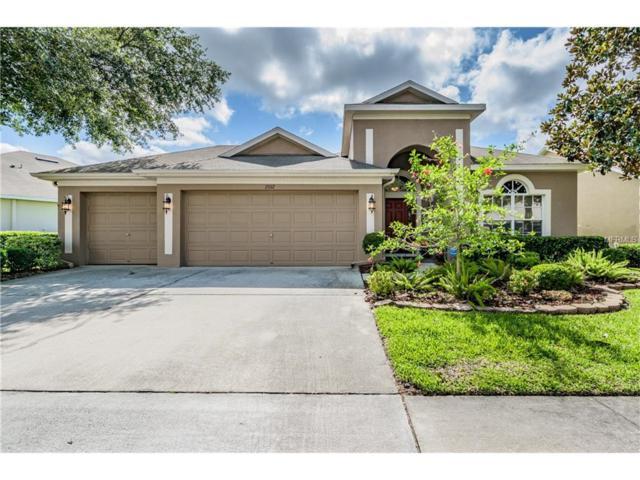 15112 Shearcrest Drive, Lithia, FL 33547 (MLS #T2884472) :: The Duncan Duo & Associates