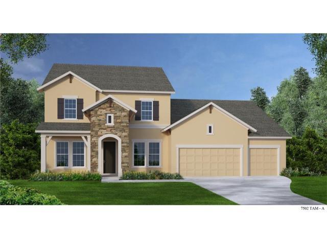 6211 Knob Tree Drive, Lithia, FL 33547 (MLS #T2884640) :: The Duncan Duo & Associates