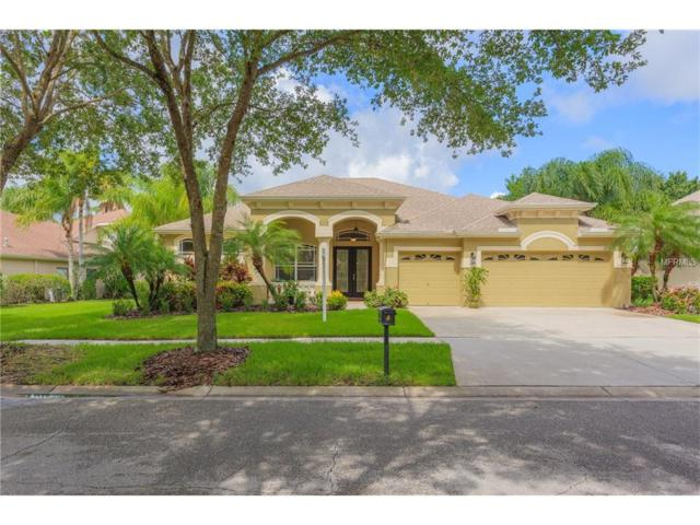 15313 Vireoglen Lane, Lithia, FL 33547 (MLS #T2885015) :: The Duncan Duo & Associates