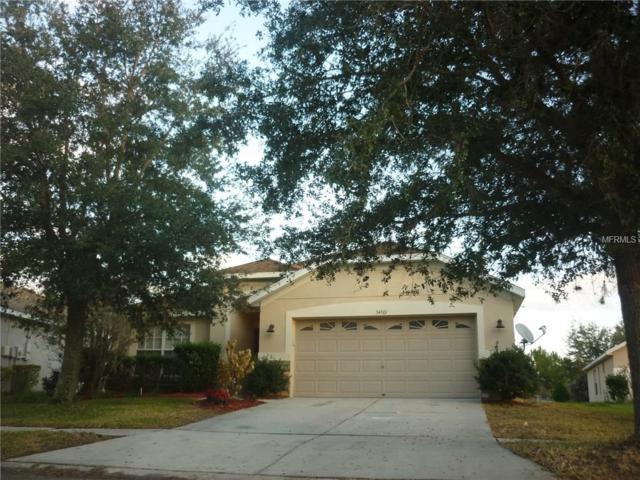 34501 Cliffcreek Court, Wesley Chapel, FL 33545 (MLS #T2885031) :: The Duncan Duo & Associates