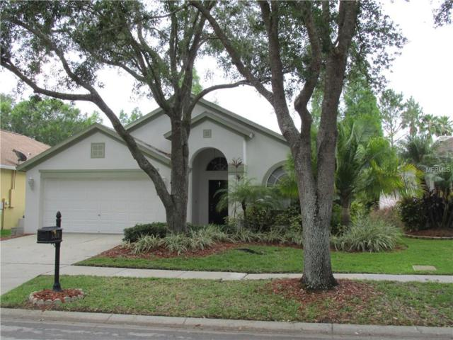 11824 Easthampton Drive, Tampa, FL 33626 (MLS #T2885247) :: The Duncan Duo & Associates