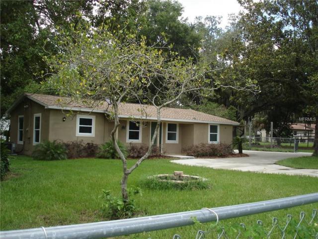 3307 Red Ruffle Lane, Dover, FL 33527 (MLS #T2885263) :: Team Pepka