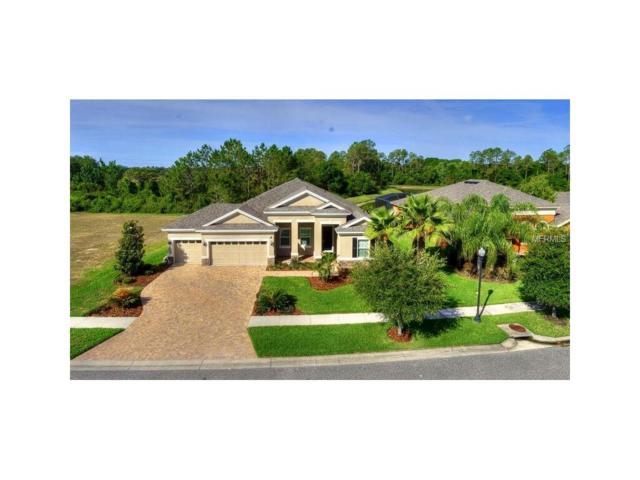 32108 Summerglade Drive, Wesley Chapel, FL 33545 (MLS #T2885350) :: Team Bohannon Keller Williams, Tampa Properties
