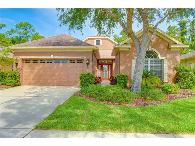 9614 Gretna Green Drive, Tampa, FL 33626 (MLS #T2885562) :: The Duncan Duo & Associates