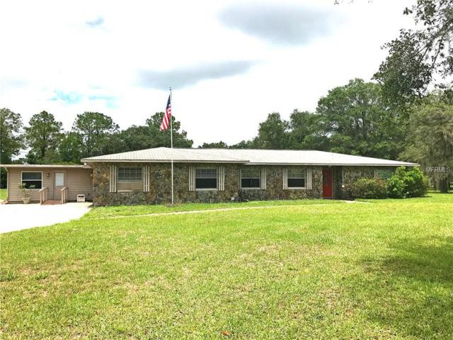 28523 Sonny Drive, Wesley Chapel, FL 33544 (MLS #T2885630) :: The Duncan Duo & Associates