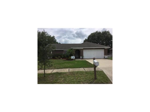 19607 Wyndmill Circle, Odessa, FL 33556 (MLS #T2885879) :: Team Bohannon Keller Williams, Tampa Properties