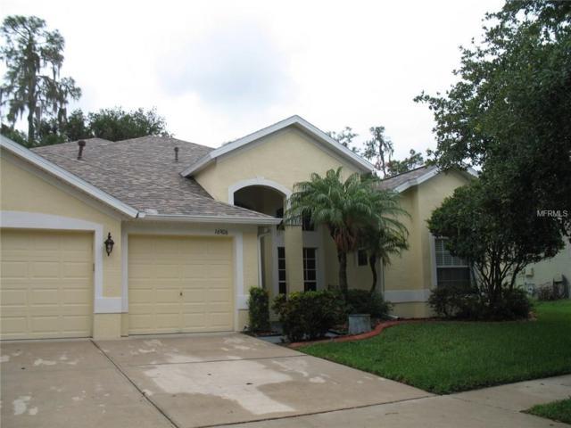 16906 Falconridge Road, Lithia, FL 33547 (MLS #T2885929) :: The Duncan Duo & Associates