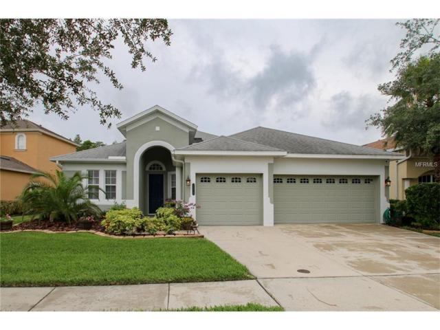 20418 Walnut Grove Lane, Tampa, FL 33647 (MLS #T2886004) :: Team Bohannon Keller Williams, Tampa Properties