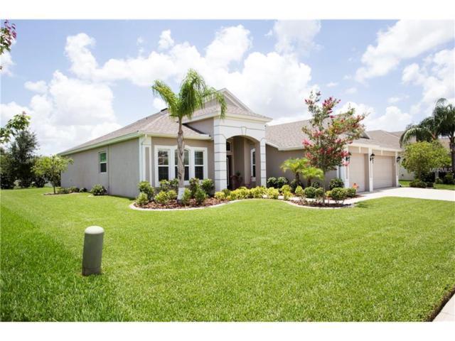 Riverview, FL 33579 :: The Duncan Duo & Associates
