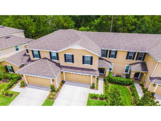 20533 Grand Vista Lane, Tampa, FL 33647 (MLS #T2886112) :: Team Bohannon Keller Williams, Tampa Properties