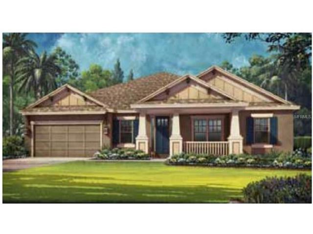 1629 Tilted Cypress Place, Wesley Chapel, FL 33544 (MLS #T2886315) :: The Duncan Duo & Associates