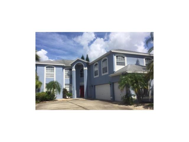 13005 Saint Filagree Drive, Riverview, FL 33579 (MLS #T2886730) :: The Duncan Duo & Associates