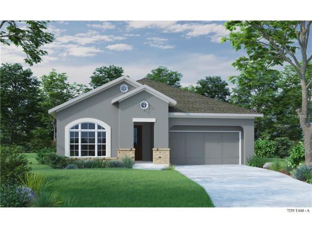 13903 Goldfinch Glade Lane, Lithia, FL 33547 (MLS #T2887068) :: The Duncan Duo & Associates