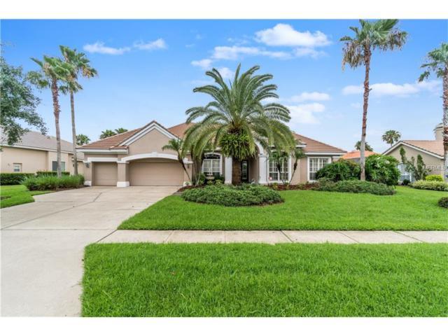 4604 Avenue Longchamps, Lutz, FL 33558 (MLS #T2887175) :: The Duncan Duo & Associates