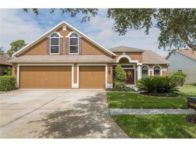 14910 Heronglen Drive, Lithia, FL 33547 (MLS #T2887284) :: The Duncan Duo & Associates