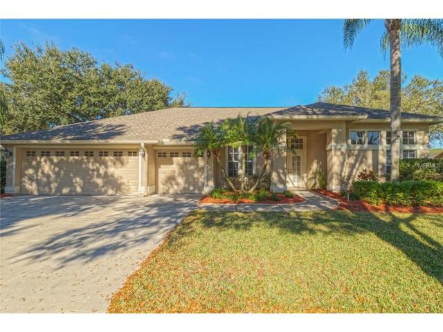 3824 Spruce Pine Drive, Valrico, FL 33596 (MLS #T2887441) :: Arruda Family Real Estate Team