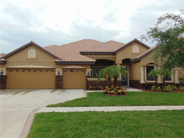 20104 Pond Spring Way, Tampa, FL 33647 (MLS #T2887479) :: Team Bohannon Keller Williams, Tampa Properties