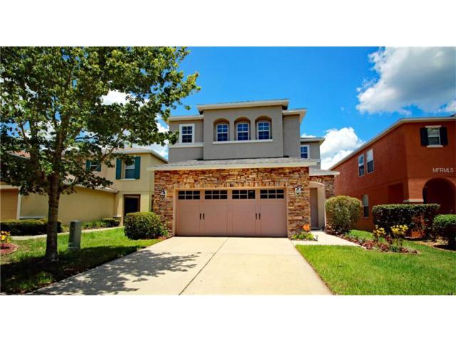 11122 Silver Fern Way, Riverview, FL 33569 (MLS #T2887711) :: The Duncan Duo & Associates