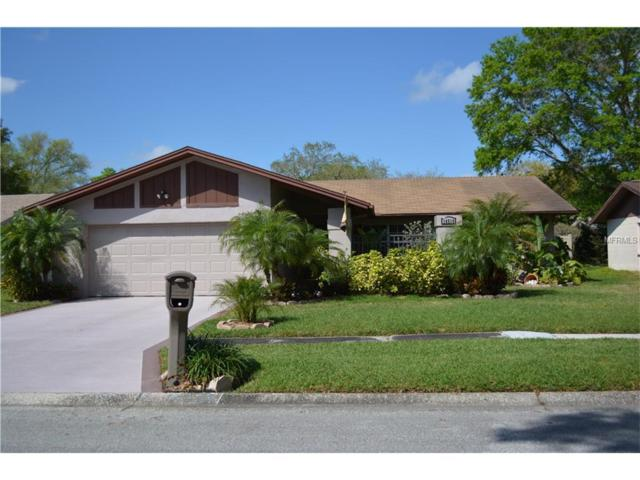 14510 Mecca Place, Tampa, FL 33625 (MLS #T2888044) :: The Duncan Duo & Associates