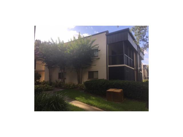 11708 Raintree Lake Lane D, Tampa, FL 33617 (MLS #T2888141) :: Arruda Family Real Estate Team