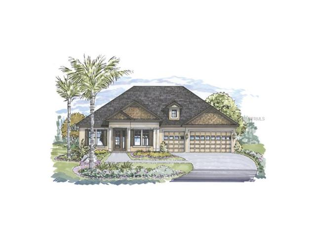 2530 Robertson Trail, Lutz, FL 33559 (MLS #T2888159) :: Griffin Group