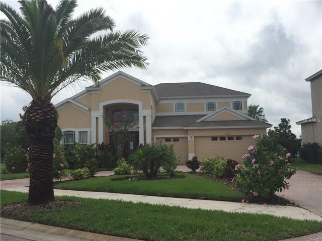 17903 Bahama Isle Circle, Tampa, FL 33647 (MLS #T2888423) :: Griffin Group