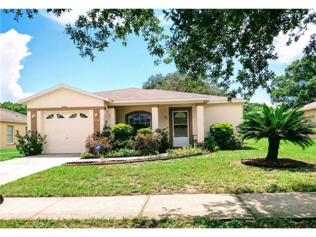 8530 Lazy River Dr, Tampa, FL 33617 (MLS #T2888437) :: The Duncan Duo & Associates