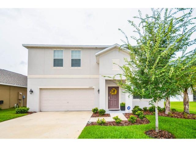 13207 Royal Pines Avenue, Riverview, FL 33579 (MLS #T2888547) :: The Duncan Duo & Associates