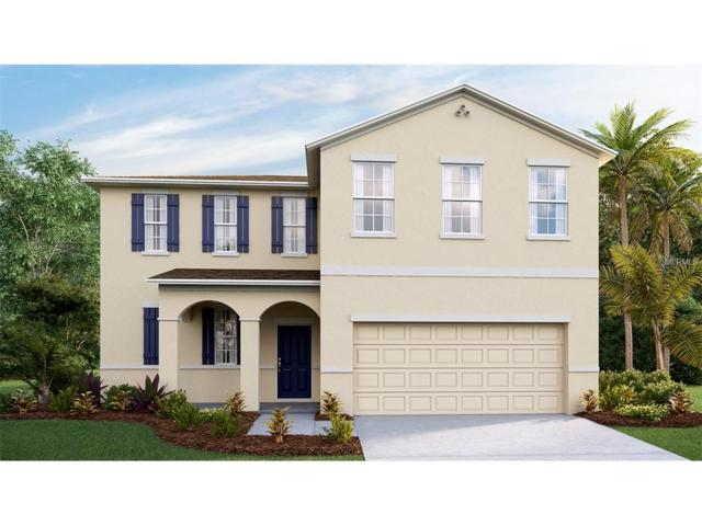 10602 Scenic Hollow Drive, Riverview, FL 33578 (MLS #T2888553) :: The Duncan Duo & Associates