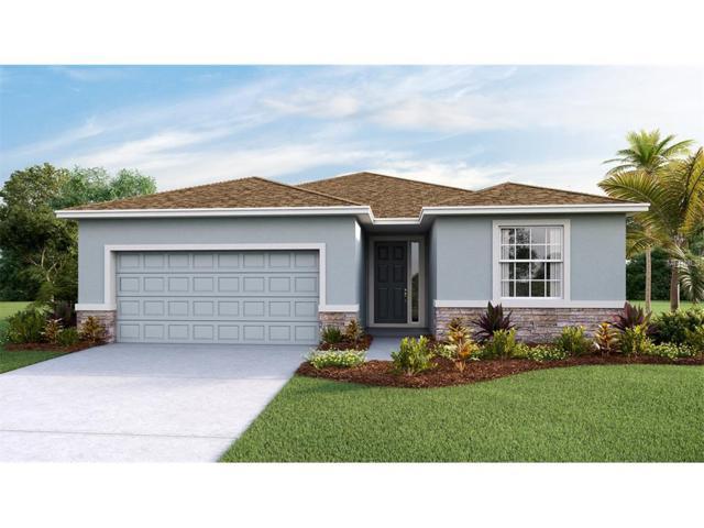 11507 Storywood Drive, Riverview, FL 33578 (MLS #T2888559) :: The Duncan Duo & Associates