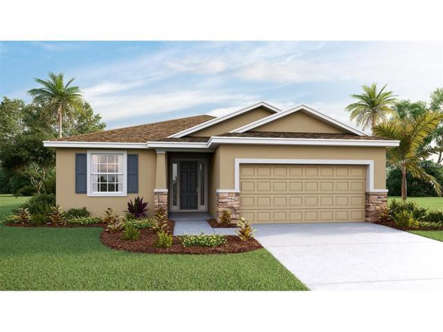 11508 Storywood Drive, Riverview, FL 33578 (MLS #T2888584) :: The Duncan Duo & Associates
