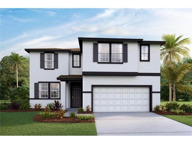 11504 Storywood Drive, Riverview, FL 33578 (MLS #T2888590) :: The Duncan Duo & Associates