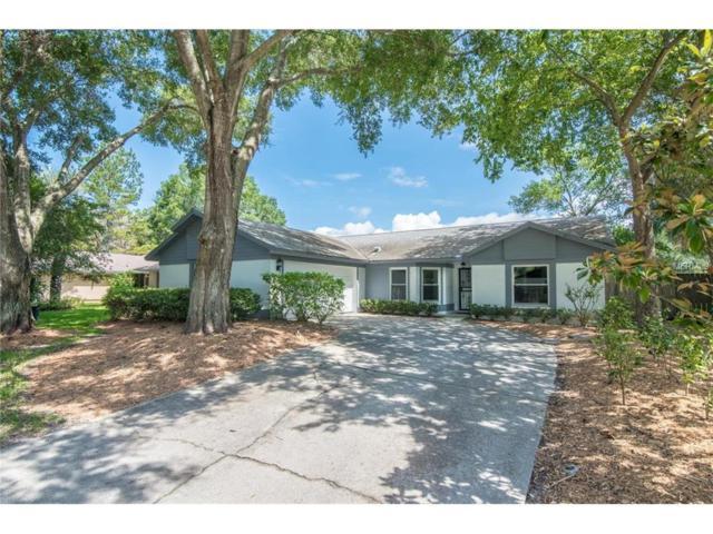 17534 Shadyside Circle, Lutz, FL 33549 (MLS #T2888702) :: Arruda Family Real Estate Team