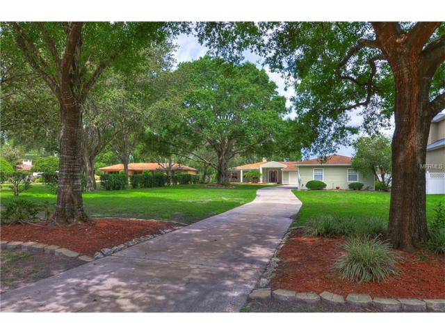 3327 Lake Padgett Drive, Land O Lakes, FL 34639 (MLS #T2888724) :: Griffin Group