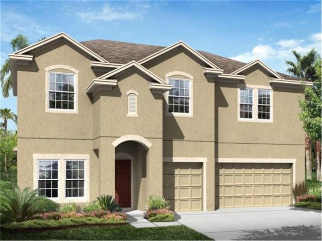 5507 70TH Drive E, Ellenton, FL 34222 (MLS #T2888725) :: Medway Realty