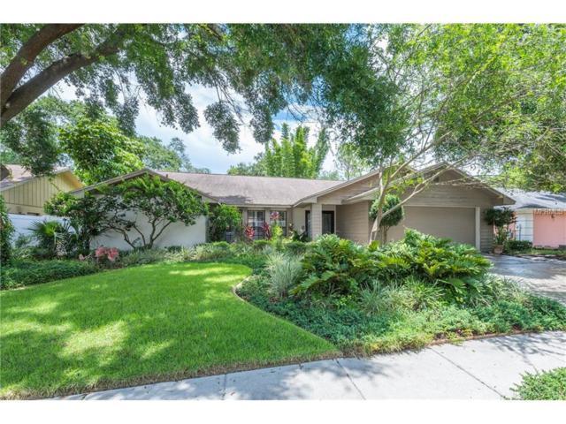 1727 Shady Leaf Drive, Valrico, FL 33596 (MLS #T2888795) :: Arruda Family Real Estate Team