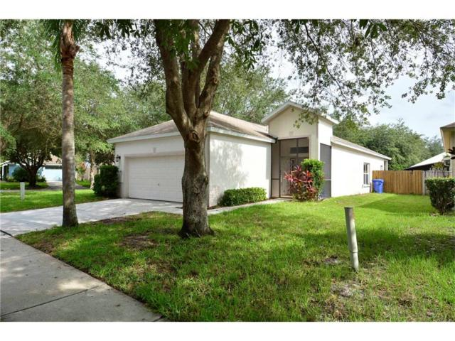 5804 Meadowpark Place, Lithia, FL 33547 (MLS #T2888831) :: The Duncan Duo & Associates