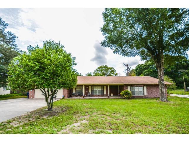 8703 N Temple Avenue, Tampa, FL 33617 (MLS #T2888928) :: The Duncan Duo & Associates