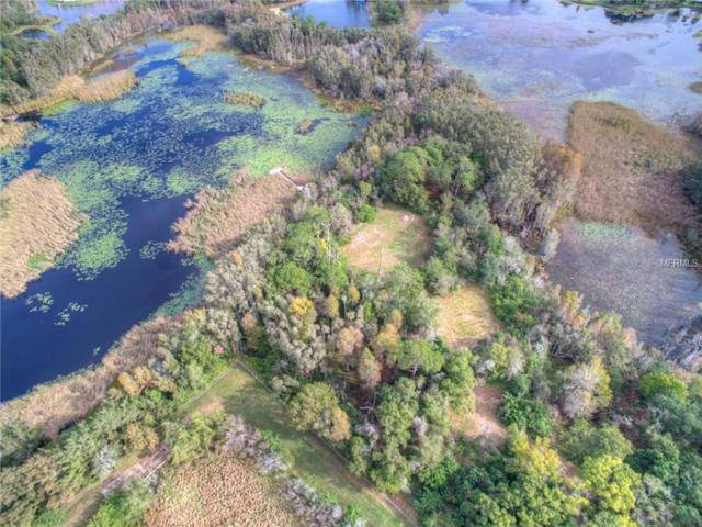 1758 Land O Lakes Boulevard, Lutz, FL 33549 (MLS #T2888984) :: The Duncan Duo & Associates