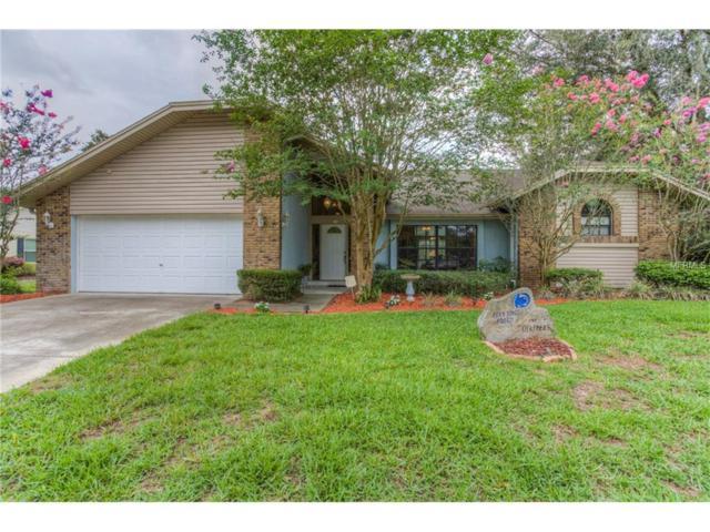 611 Penn National Road, Seffner, FL 33584 (MLS #T2889029) :: Arruda Family Real Estate Team