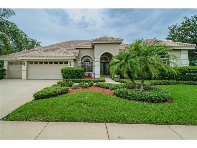 1241 Hagen Drive, Trinity, FL 34655 (MLS #T2889078) :: Griffin Group