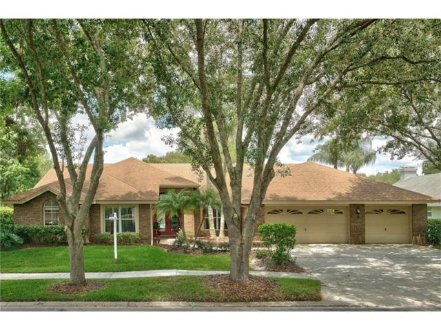 17510 Edinburgh Drive, Tampa, FL 33647 (MLS #T2889101) :: Team Bohannon Keller Williams, Tampa Properties