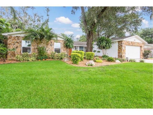 513 Rooks Road, Seffner, FL 33584 (MLS #T2889135) :: Arruda Family Real Estate Team
