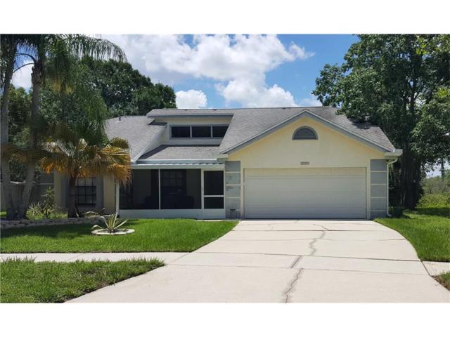 12021 Vermillion Way, Riverview, FL 33569 (MLS #T2889144) :: Griffin Group