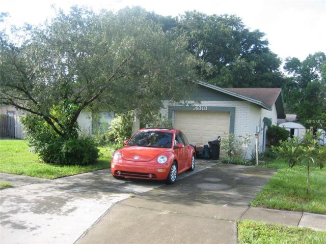14313 Capitol Drive, Tampa, FL 33613 (MLS #T2889150) :: White Sands Realty Group