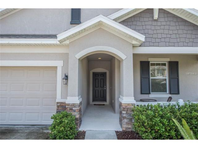 7634 Rathdown Lane, Wesley Chapel, FL 33545 (MLS #T2889163) :: Griffin Group